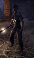 Guérisseur chasseur de trésors