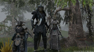 Teso-argonian-soldiers