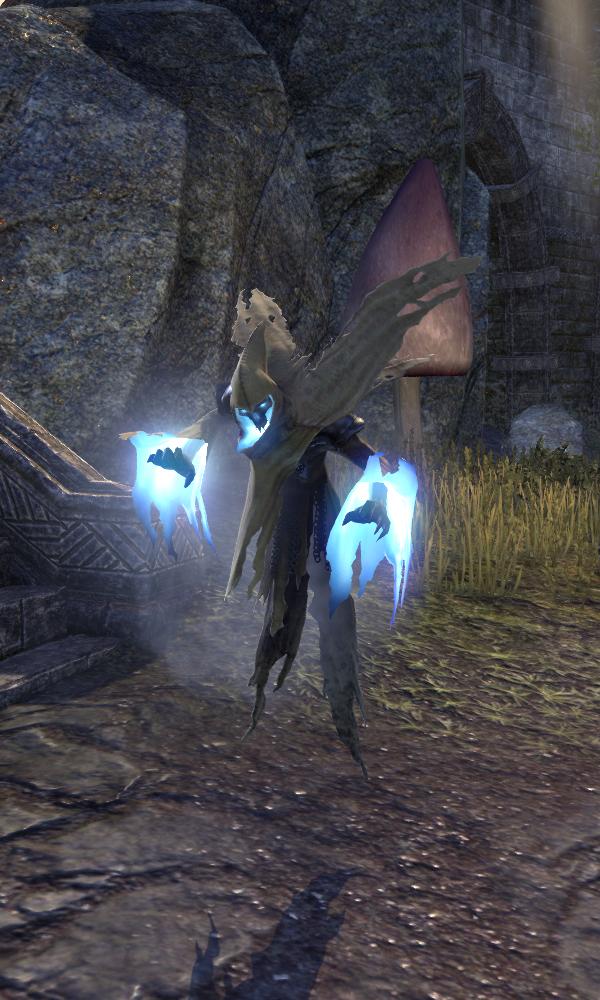 Wraith (Online)