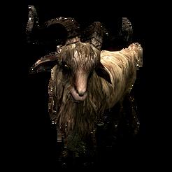 Коза Гледа Gleda the Goat 002.png