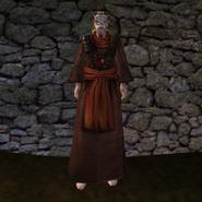 Простая Мантия 13 (Morrowind) (муж)