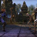 Khajiit fighting skeletons ESO.jpg