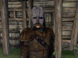 The Gray Fox (Oblivion)