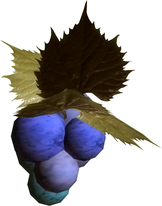 Jazbay Grapes (Skyrim)
