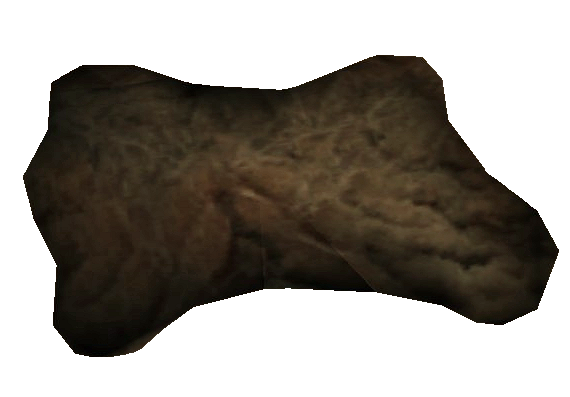 Netch Leather (Morrowind)