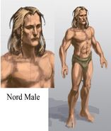 Nord Male 3