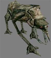 Ogar (Morrowind)