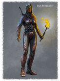 Dark Brotherhood Female Armor
