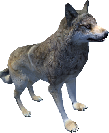 Волк (Oblivion)