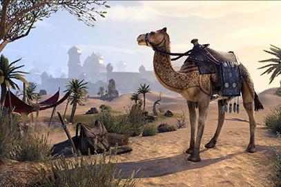 Tattooed Shorn Camel