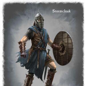 Stormcloack Armor.jpg