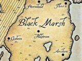 Black Marsh