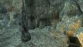 Inside Abaelun Mine