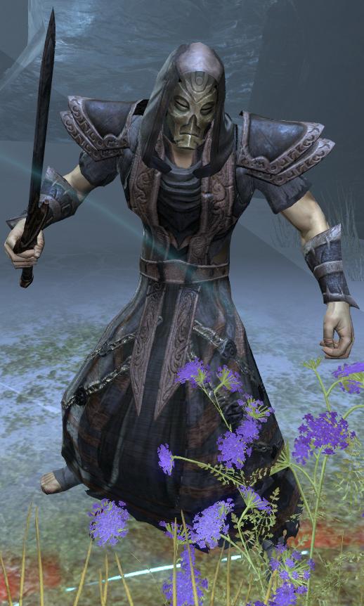 Dragon Priest (Online)