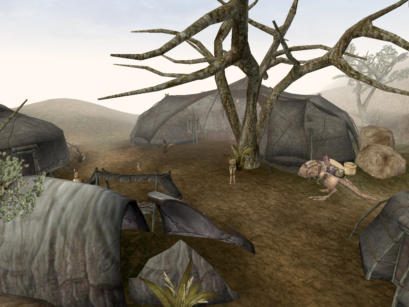 Ahemmusa Camp (Morrowind)