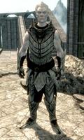 Rycerz-Paladyn Gelebor (Skyrim)