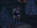 Skooma Cat