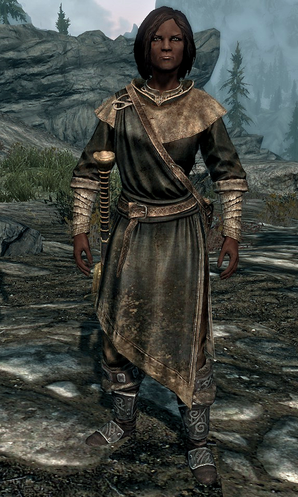 Vigilant of Stendarr (Skyrim)