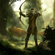 Recruit (Dark Elf) card art