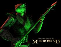 Argonianin (Morrowind)