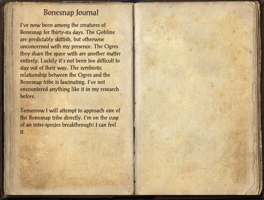 Bonesnap Journal