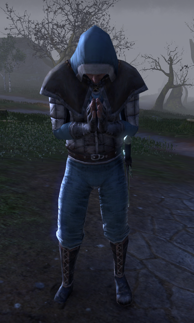 Pyromancien de la guilde