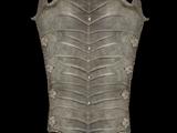 The Gray Aegis