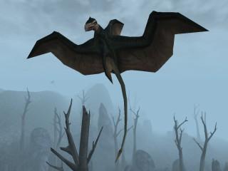Скальный наездник (Morrowind)