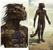Argonian Male