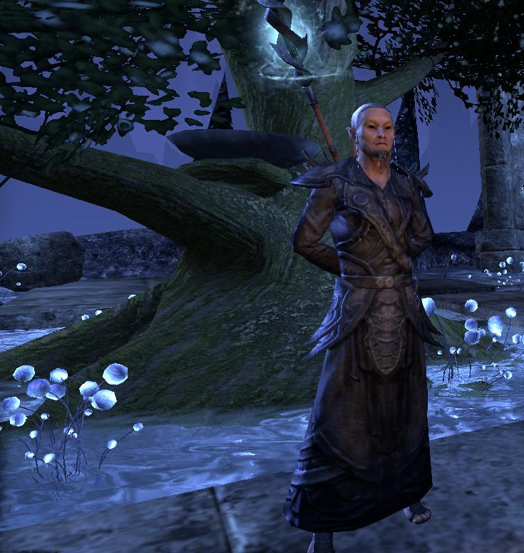 Elder Erthor