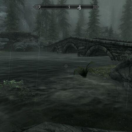 White River Flooded.jpg