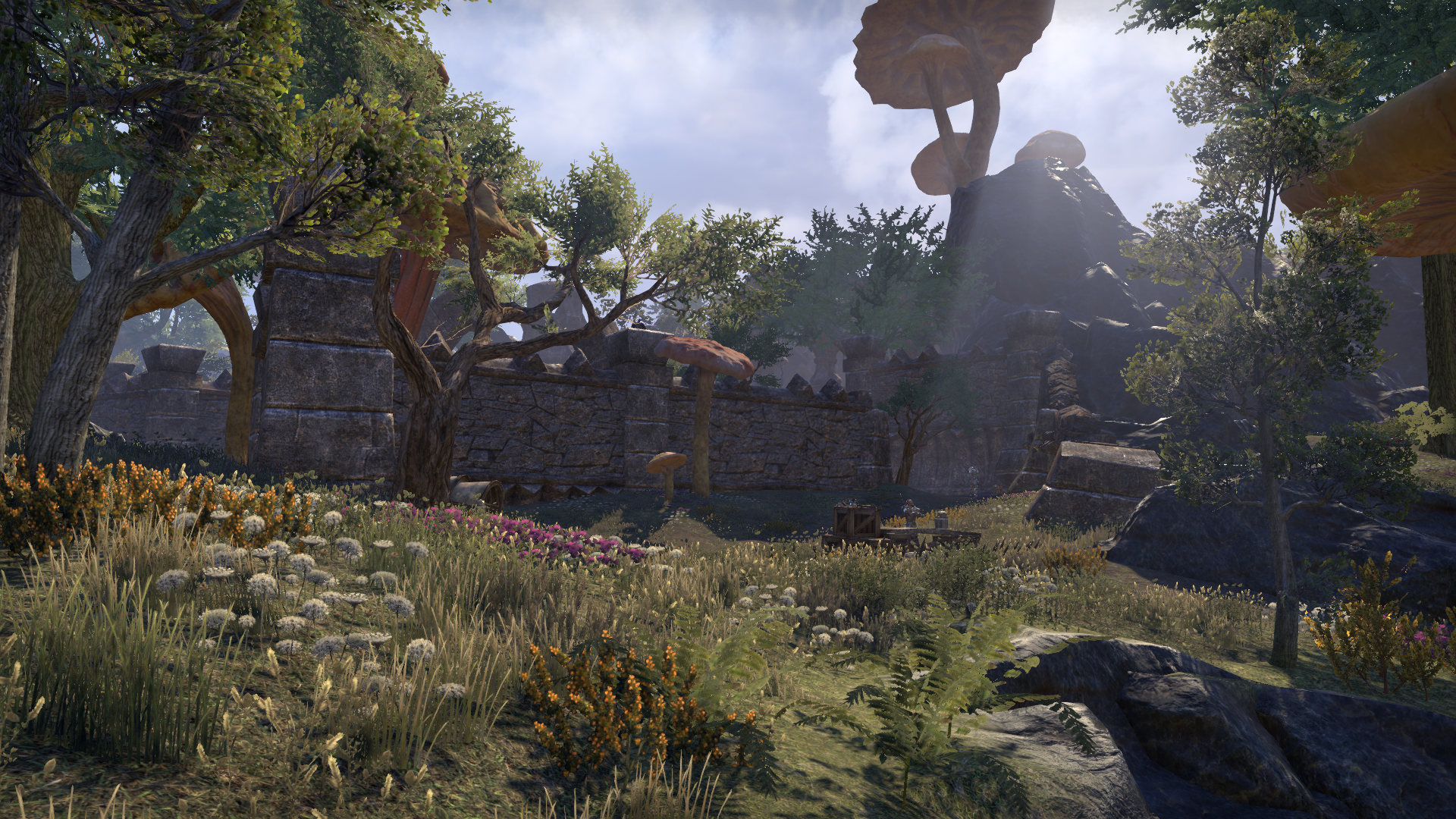 Зайнтирарис (Online: Morrowind)