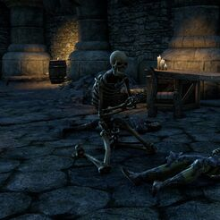Скелет (Online).jpg