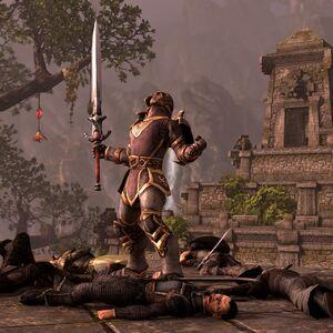 The Elder Scrolls Online 4.jpg