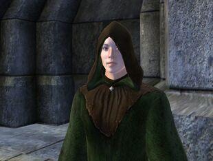 Зелёный капюшон