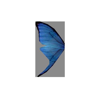 Крыло синей бабочки (Skyrim)