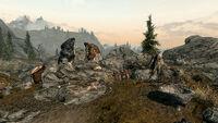 Лагерь Говорящий Камень - сундук