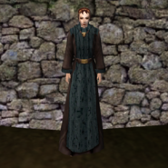 Простая мантия 11 (Morrowind) жен