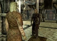 Dovakiin rozmawiający z Elenwen (Skyrim)