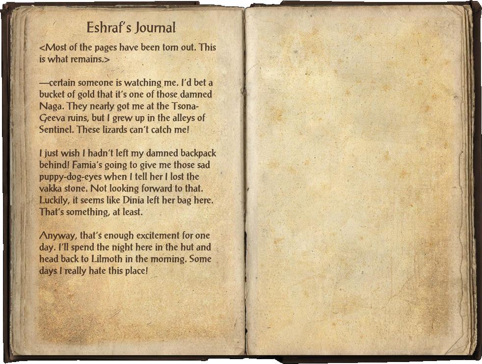 Eshraf's Journal