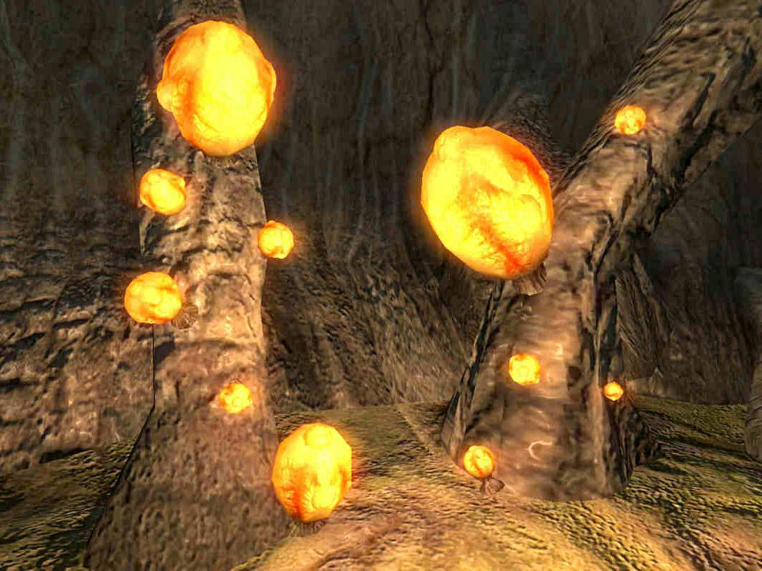 Огненный гриб