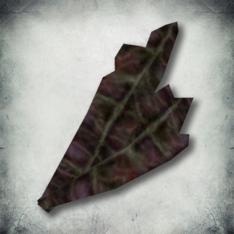 Вредозобник (Morrowind).png