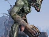 Daedroth (Morrowind)