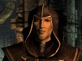 Альтмеры (Skyrim)