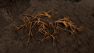Solstheim - Ash Creep Cluster (Skyrim)