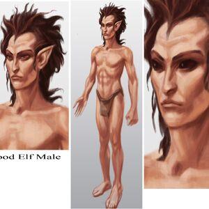 Wood Elf Male.jpg