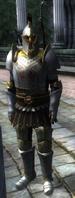 Imperial guard elite(oblivion)