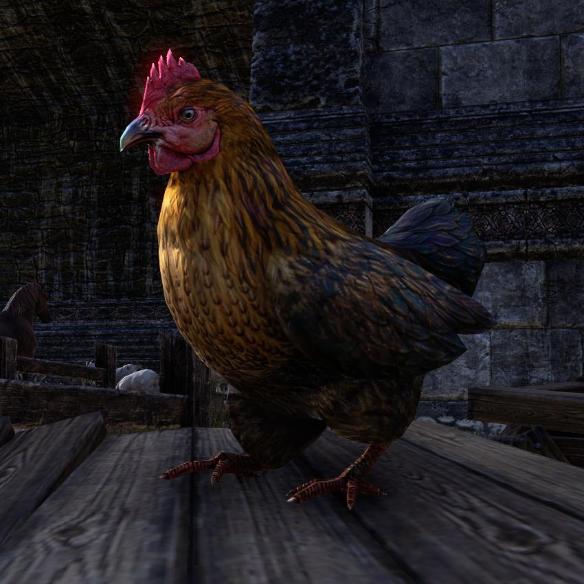 Chicken (Online)