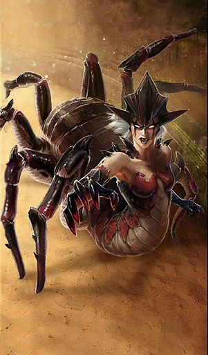 Młoda pajęczyca