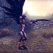 Harpy Matriarch (Online)